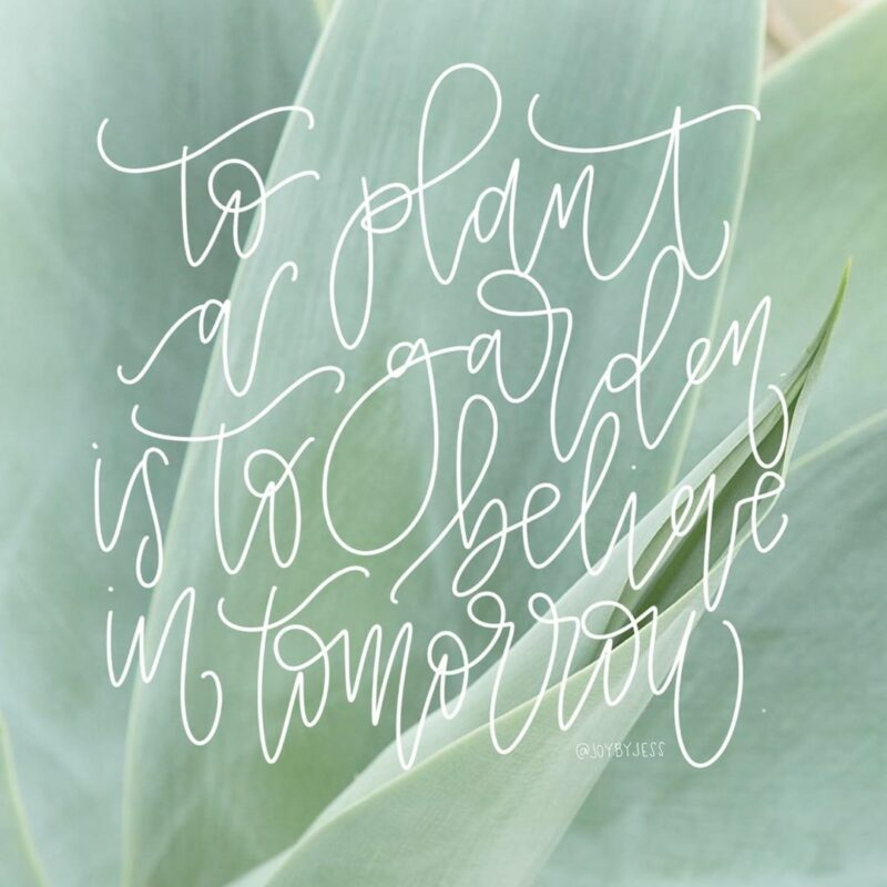 to plant a graden is to believe in tomorrow