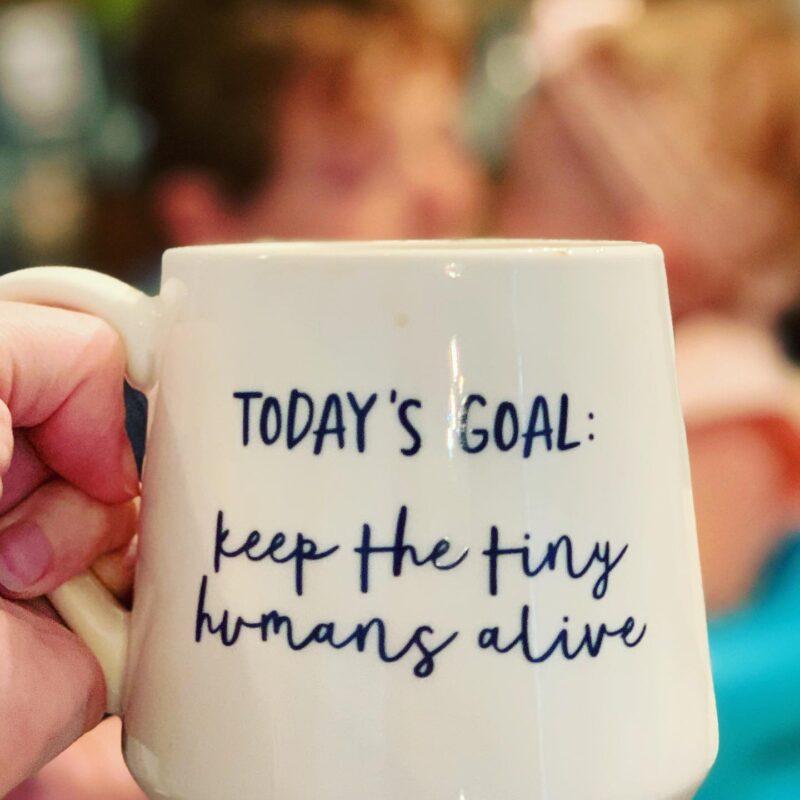 Todays Goal_Keep The Tiny Humans Alive